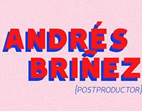 Curriculm Vitae - Andrés Briñez