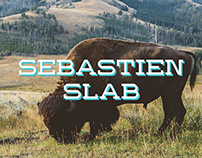 Sebastien Slab Regular typeface