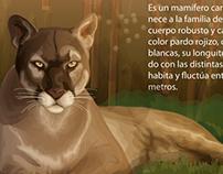 Puma Vectorial