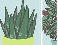 Print: Potted Plants/Calathea & Aloe Vera
