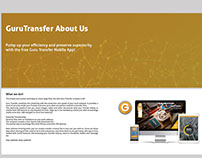 Guru Transfer - Website