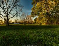 Three Views of A Field