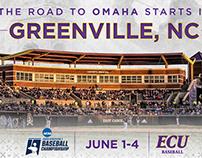 2018 Greenville Baseball Regional