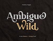 Ambigue Wild Modern x Vintage Serif Typeface