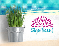 Significant - Flower arrangements