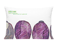 Red cabbage watercolor prints for the farm
