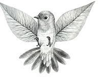 Birdy bird