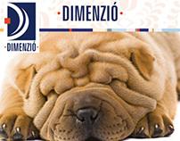 Dimenzio Biztosító Brand Identity