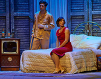 """Cat on a hot Tin Roof"" Motion Media"