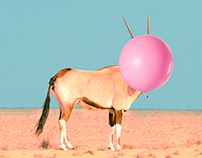Collage Art: Baloon - Animal