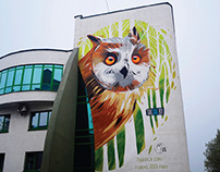 Вушатая сава | Long-eared owl