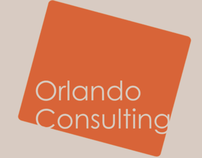 Orlando consulting's corporate identity - Business card