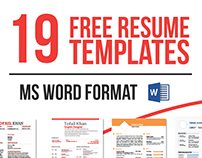 19 Free Resume Templates Download Now in MS WORD