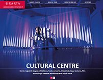 Website for Erarta Museum