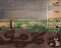 Map of Prairie Dog Umwelt