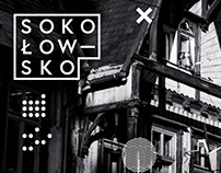 "coincidence ""Sokołowsko"" - educational open airs"