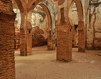 Amazing ruins 01:  Chellah, a storks' paradise