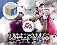 EA Tiger Wood PGA Tour 13 - Facebook Competition App