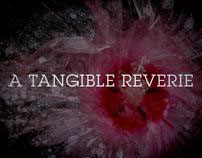 A Tangible Reverie