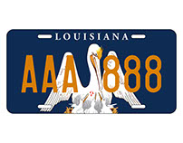 Graphic Design I - Louisiana License Plate Redesign