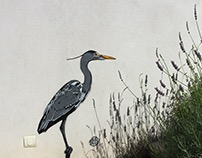 Heron by Tefi