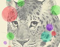 leopard changes his spots