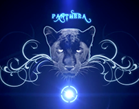 Genus Panthera - Into The Eye
