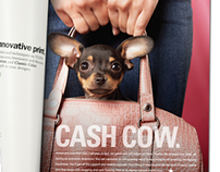 All American Pet Resorts Print Ads