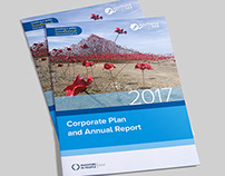 Corporate Plan & Annual Report 2017: Southend BC