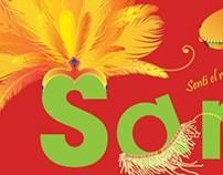 DVD Informativo. Samba Brasileña.