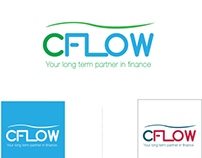 C Flow Website Design in Egypt.