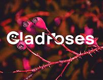 GladRoses | Visual Identity Design