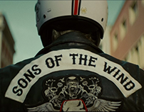 Sons Of The Wind