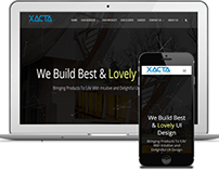 Business Website Development For Xacta Solutions