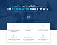 Landing page presentation for a Wordpress Theme