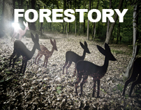 Forestory