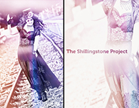 Shillingstone Project