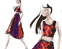 Derek Lam illustrations