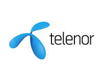 Telenor Pakistan web design