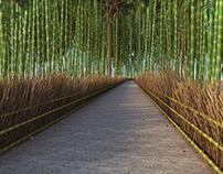 Kioto Bamboo. Japan