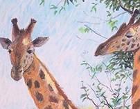 Masaii Giraffes - Pastel