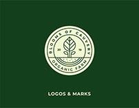 Logofolio Vol. 02 - 2019