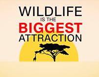 CNNi AfricaView: Wildlife Tourism