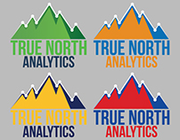 "Logo ""True North Analytics"" (BETA 3)"