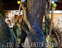 Naturaleza Urbana I