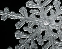 3d Modelling & Printing: Snowflakes
