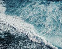 Loving the Ocean By Ali Slutsky