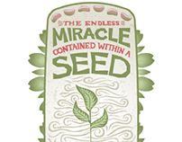 Miracle Within a Seed