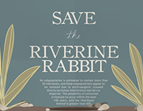 Info graph - Riverine Rabbit