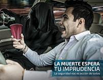 CORREGIDORA - Seguridad Vial